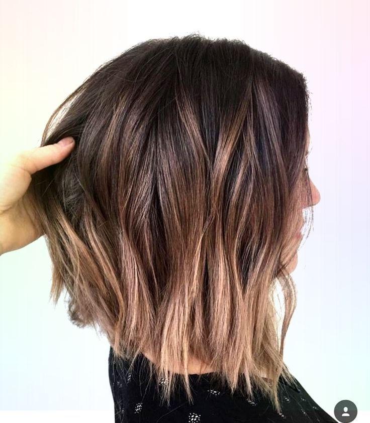 Braunes Haar Hellbraune Highlights Kurzhaar Braunes Classpintag Explore H Balayage Kurze Haare Frisuren Lange Haare Braun Frisuren Kurze Haare Braun