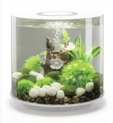 BIORB TUBE 15 MCR WHITE 15L Aquarium, accent top and base