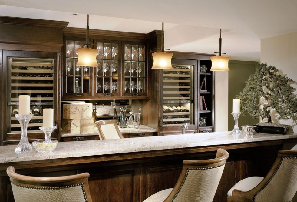 Traditional Bar With Built In Wine Cooler Built In Bookshelf