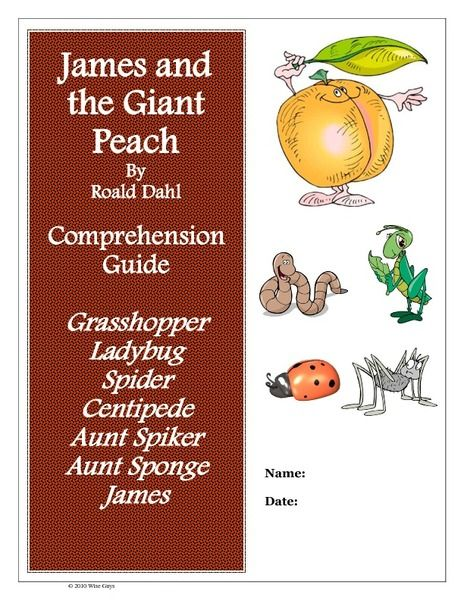 James And The Giant Peach Comprehensive Guide Worksheet