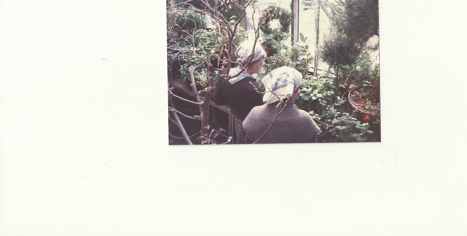 "Visits to Corgi Cottage Blog  (the Author of ""The RealPretend"")  http://visitstocorgicottage.blogspot.com/"