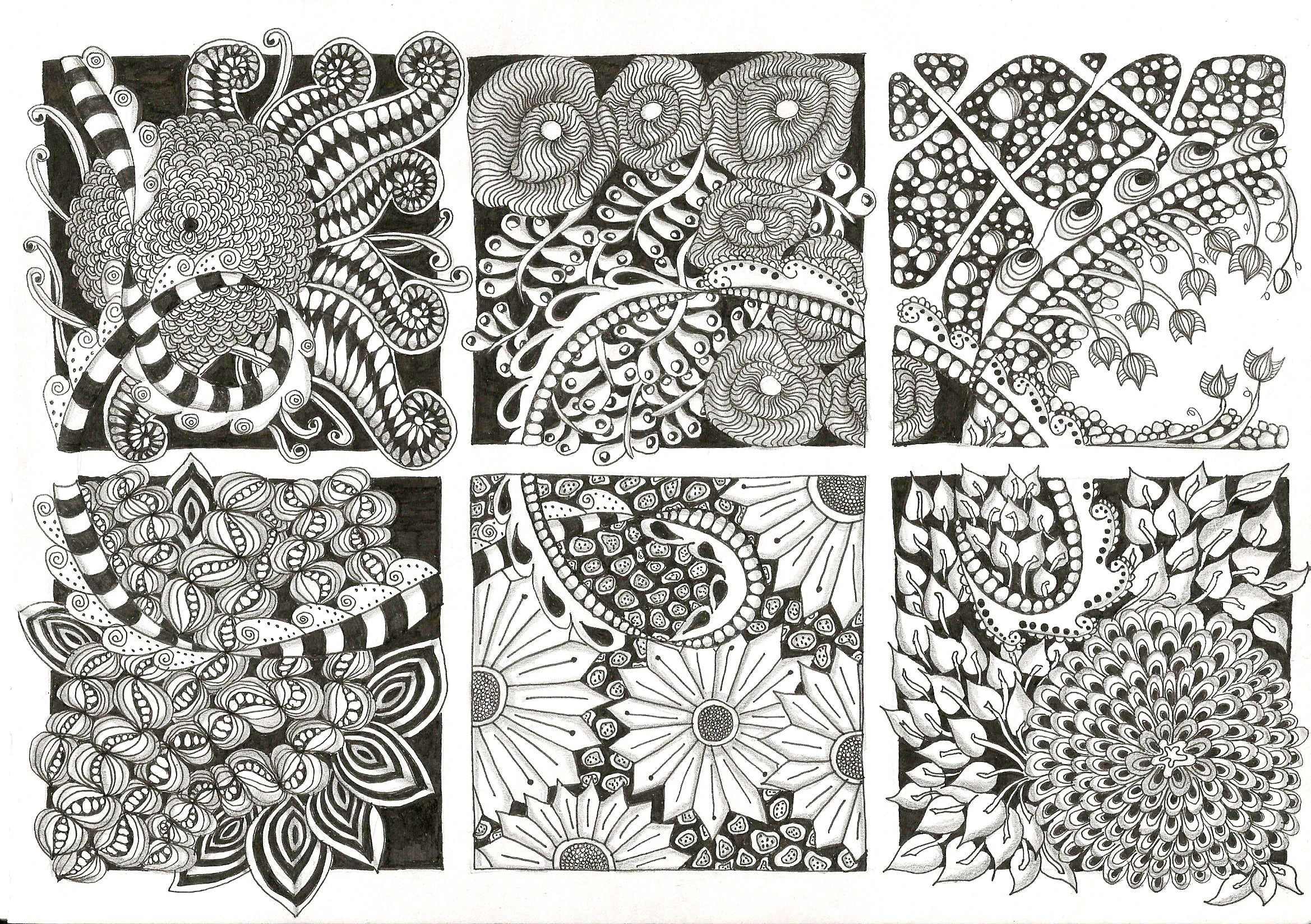 Zentangle flowers my zentangle inspired art and other drawings