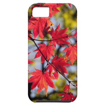 #Professional iPhone Case - #giftideas #teens #giftidea #gifts #gift #teengifts