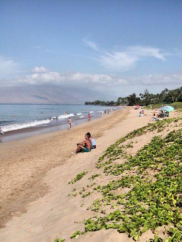 Ole Beach Park I