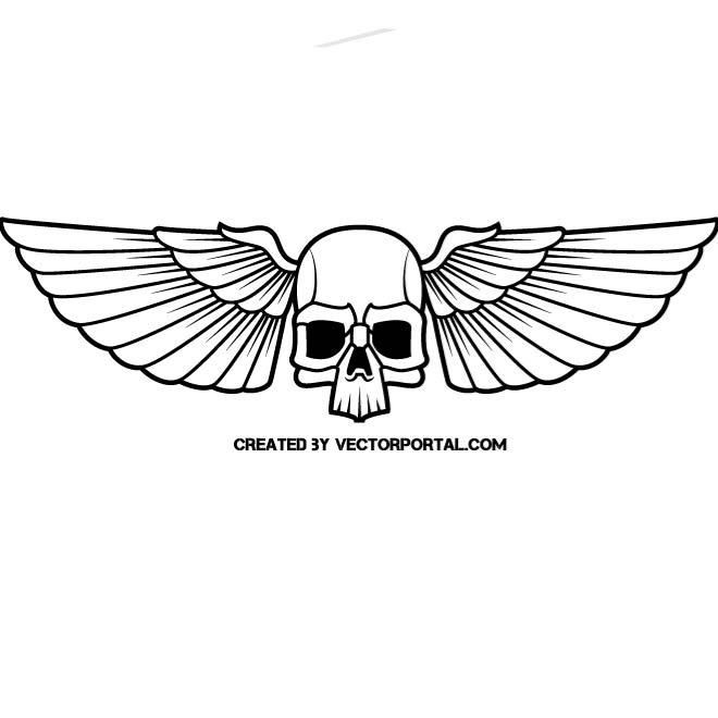 Vector Drawing Of A Skull With Wings Skull Vectors Pinterest