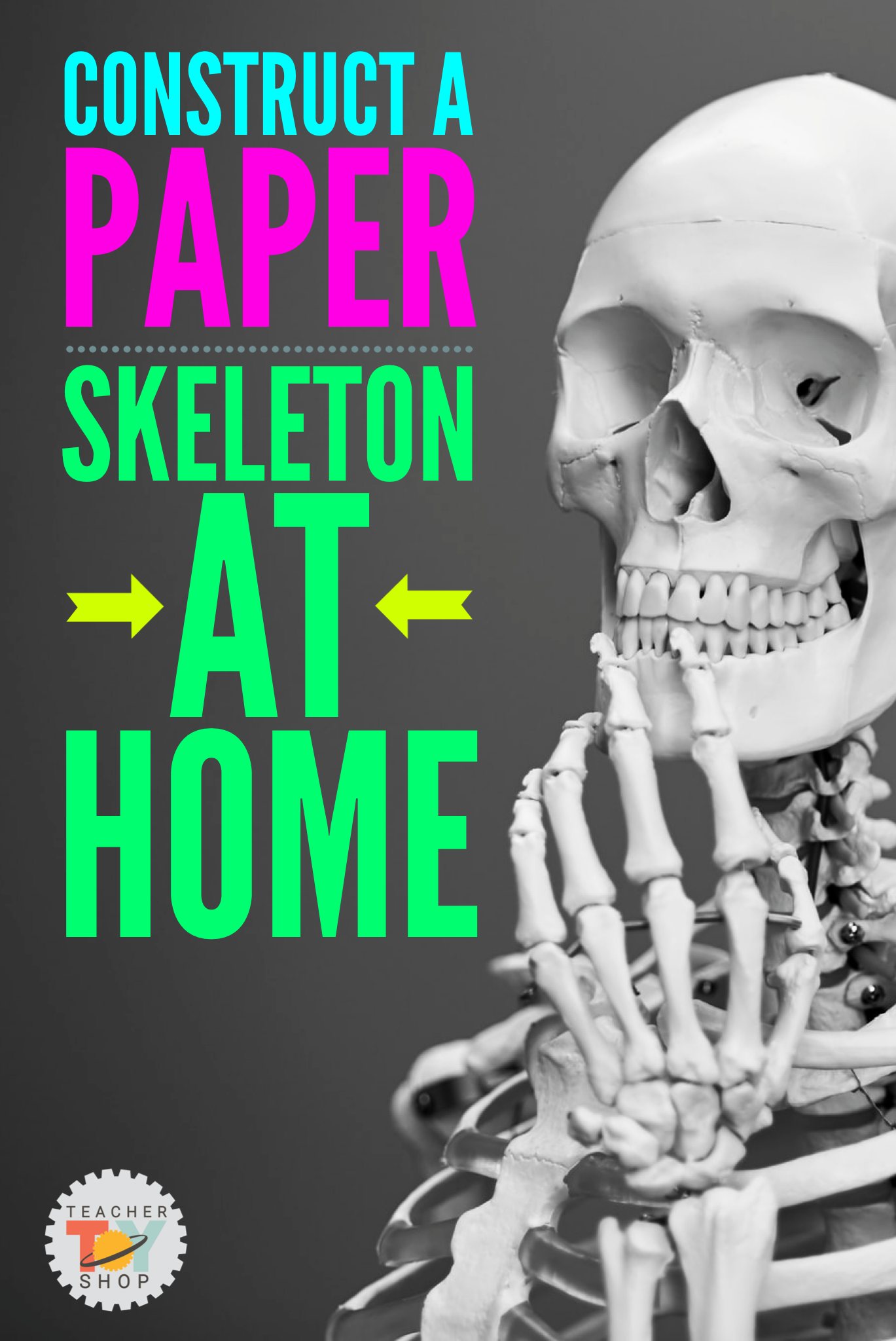 Life Size Printable Human Body Skeleton For Door Or