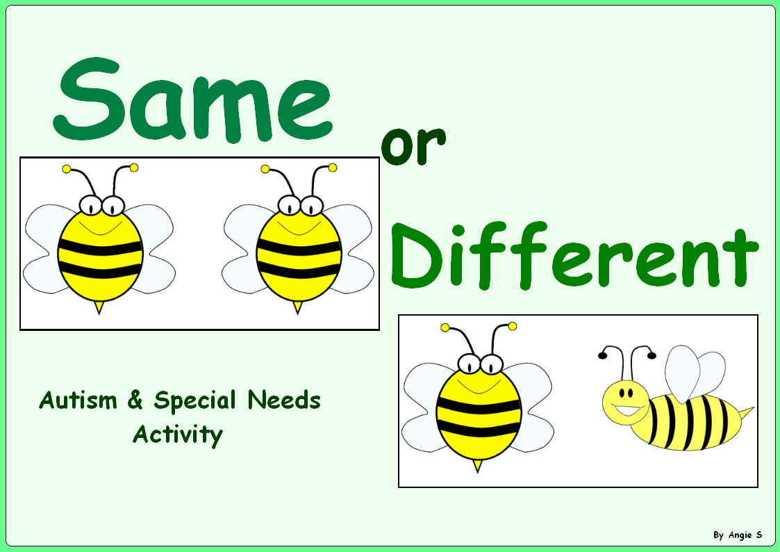 Bees Same And Different Sorting Activity For Autism Free