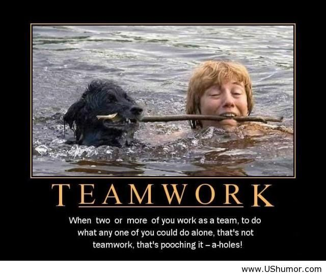 Sunday Giggle The Power Of Teamwork Work Quotes Inspirational Work Quotes Funny Work Motivational Quotes Funny
