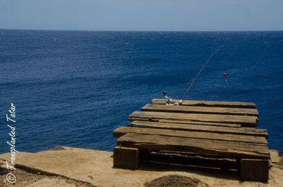 Fishing at South Point, Big Island, Hawaii: http://transplantedtatar.com/2015/10/09/a-beach-of-green-gems/