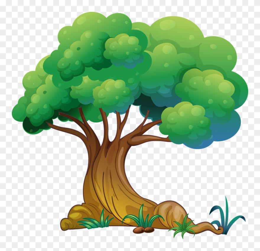 Green Tree Png Clip Art The Best Png Clipart Tree Drawing Cartoon Trees Tree Art