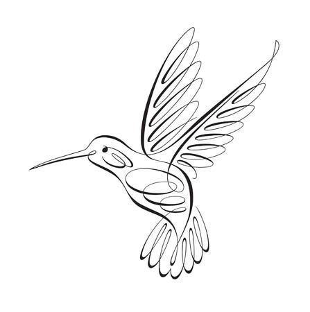 Realistic Hummingbird Drawing (4) | D-D-D-Drawing (Ch-Ch ...