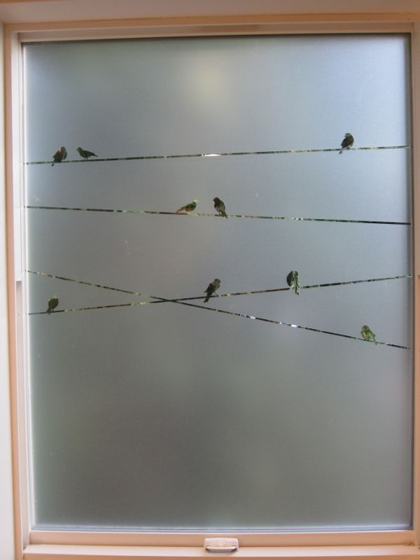 stenciled birds on a window bathroom window