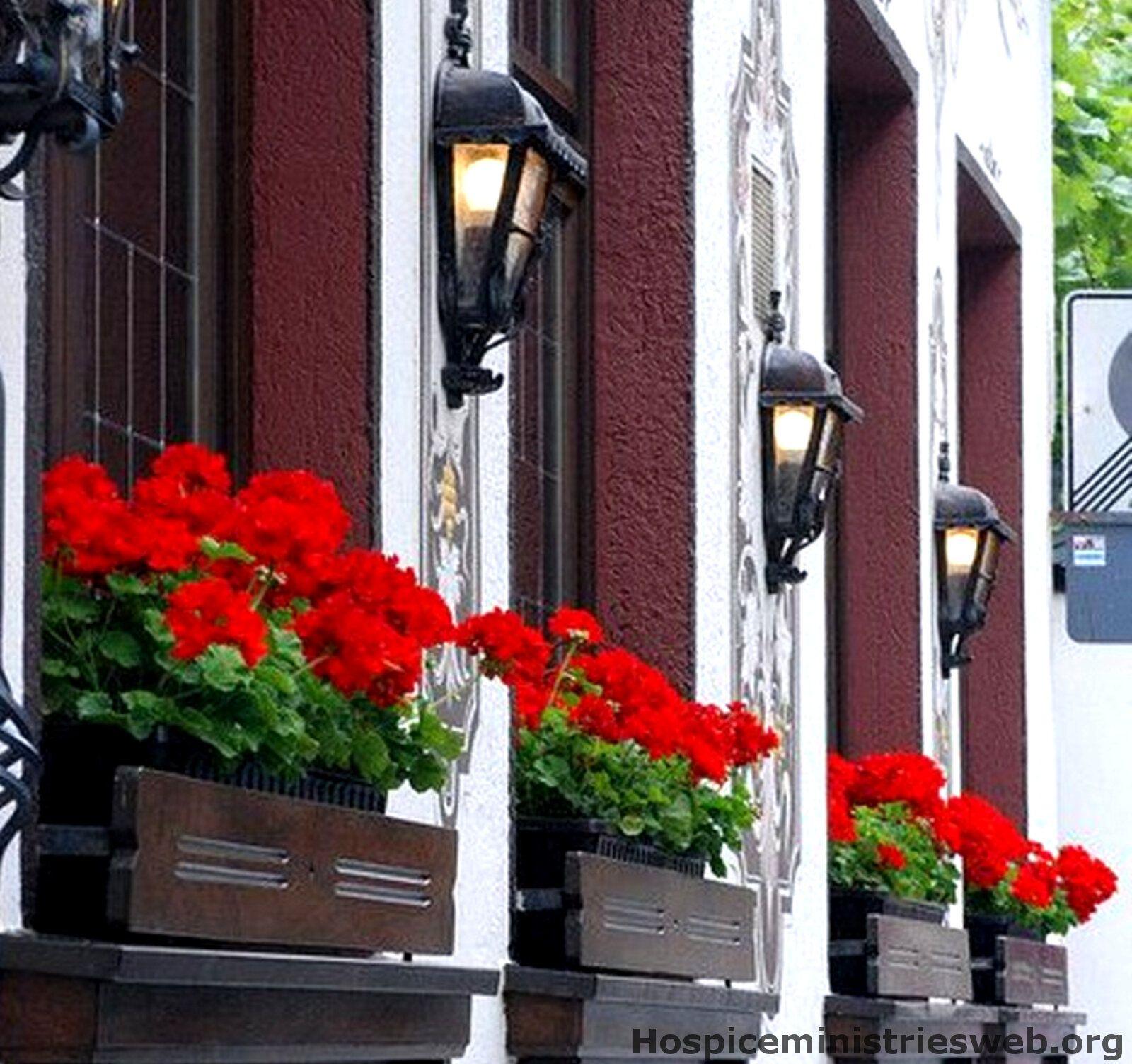 elho blumenk sten blumenk sten balkon selber bauen ideen pinterest balkon selber bauen. Black Bedroom Furniture Sets. Home Design Ideas