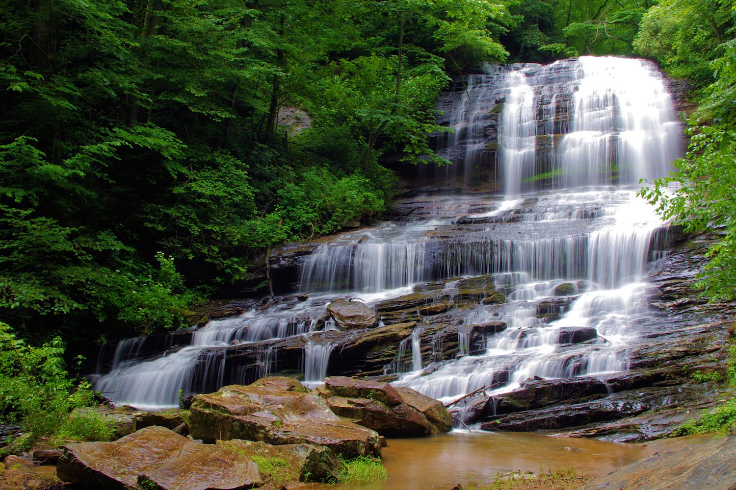 Pearson S Falls Nc Guide Photos North Carolina Waterfalls Nc Waterfalls Romantic Asheville
