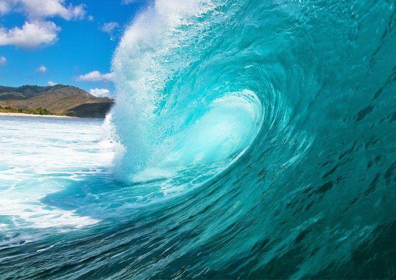 Livingwalls XXL-Tapete Wave (M) 031021 online kaufen