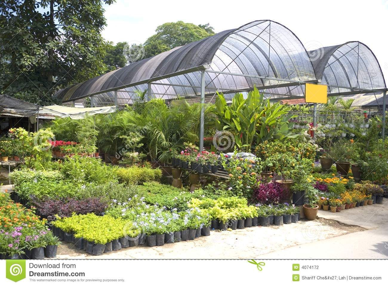 Image of a tropical plant nursery in Malaysia. | planting ...