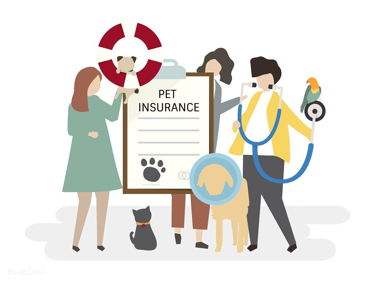 Illustration Of Pet Insurance Free Image By Rawpixel Com Pet Insurance Your Pet Pet Care Printables