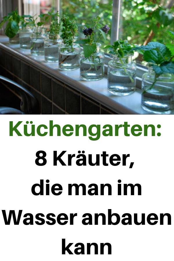 Küchengarten: 8 Kräuter, die man im Wasser anbauen kann #kleinekräutergärten