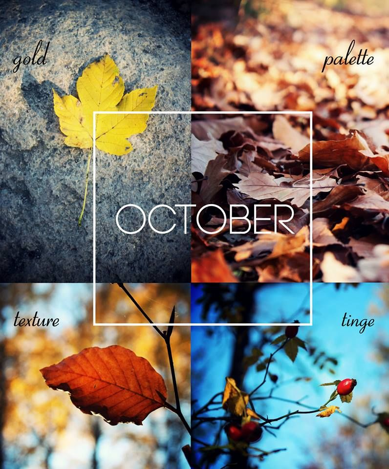 Dear October Please Be A Lucky Month