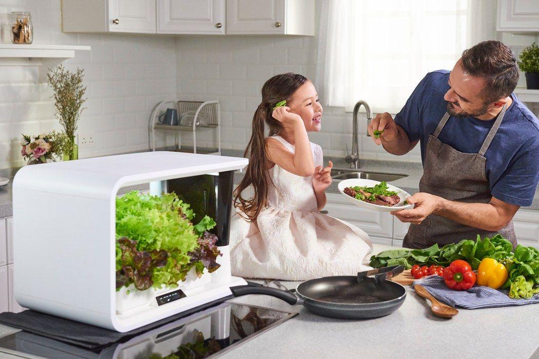 Aspara Smart Indoor Garden 01 Smart Farm Indoor Farming 400 x 300