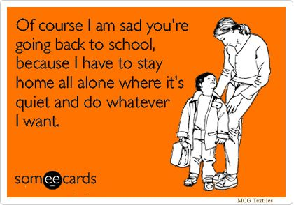 A Little Back To School Humor Back To School Quotes Funny Back To School Funny School Quotes Funny