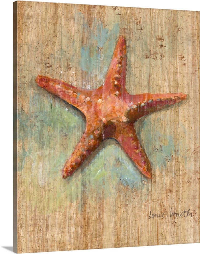 Starfish Ii Wall Art Canvas Prints Framed Prints Wall Peels Starfish Art Canvas Prints Starfish Painting