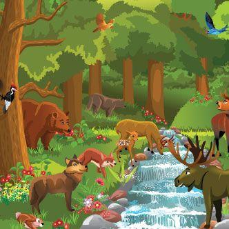 Vector Gratis De Animales Del Bosque Animales Del Bosque Ilustracion De Bosque Illustration