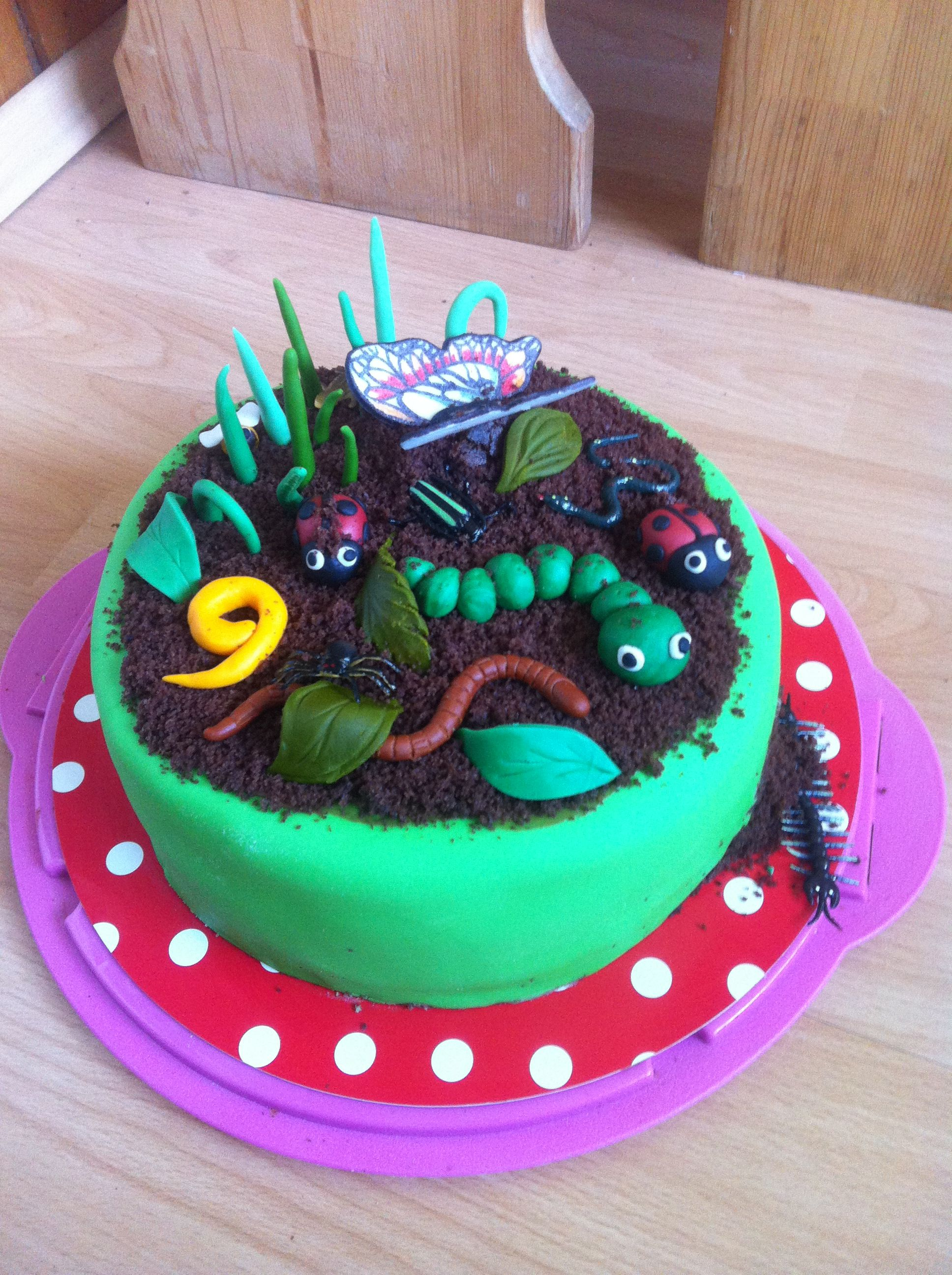 Insect Cake With Images Birthday Cake Kids Animal Birthday