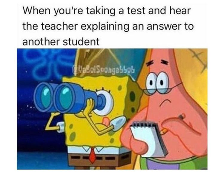 Relatable School Education With Images Funny Spongebob Memes