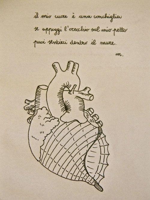 meu coração e uma concha se ele suporta o oceano no meu peito você ...