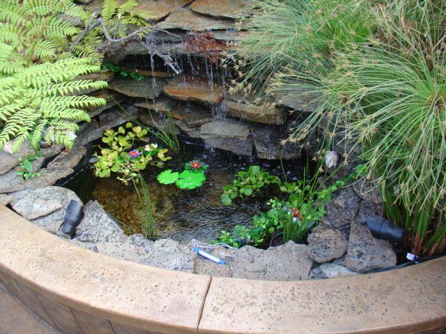 Arte y jardiner a empresa estanques y cascadas en el - Estanques en el jardin ...