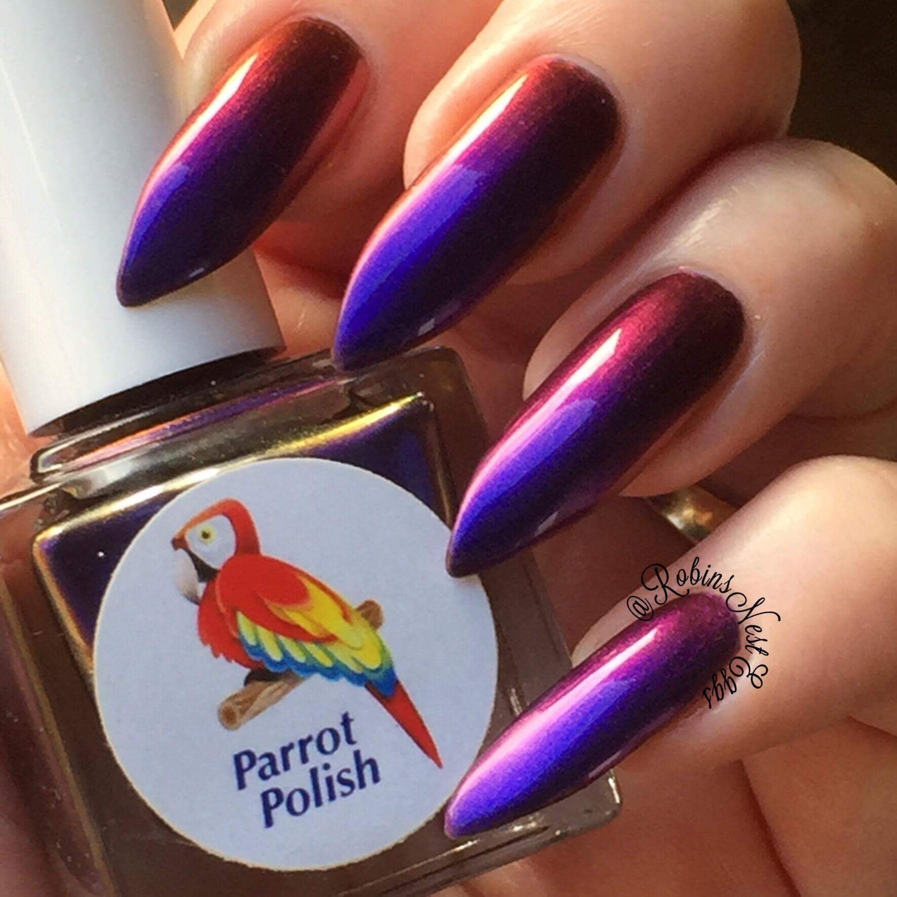 Parrot Polish - PPPP December Exclusive 2016   My Collection of ...