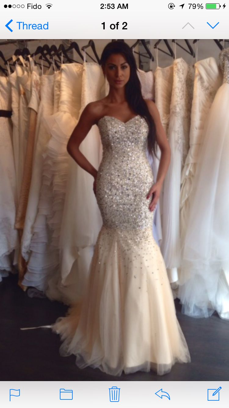 Alberto Axu Champagne Mermaid Dress With Diamonds Can We Say Wedding Reception Dress Champagne Wedding Dresses Mermaid Dream Wedding Dresses Wedding Dresses