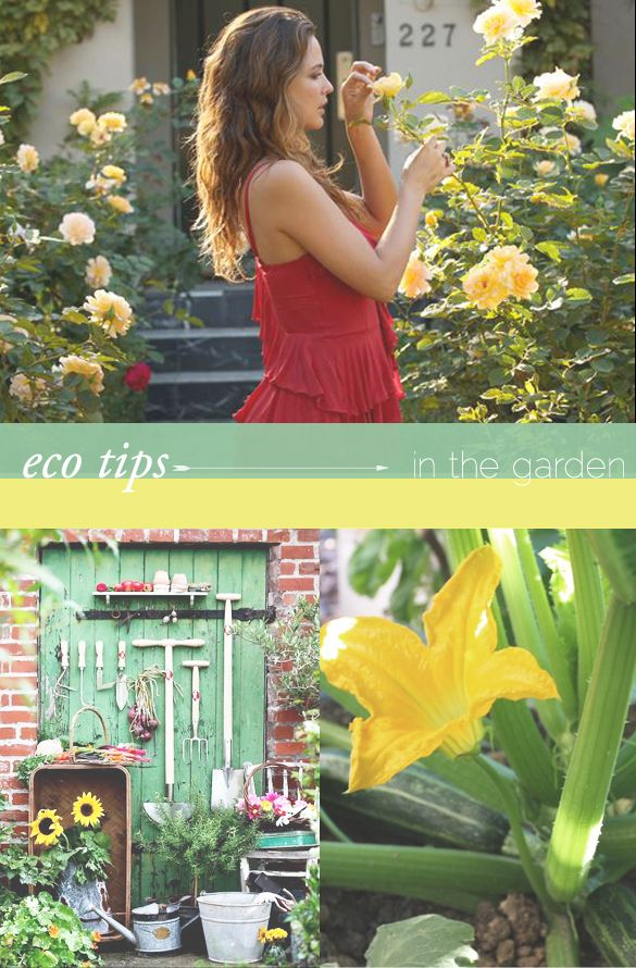 We love @Josie Maran Cosmetics tips for summer eco-gardening ...