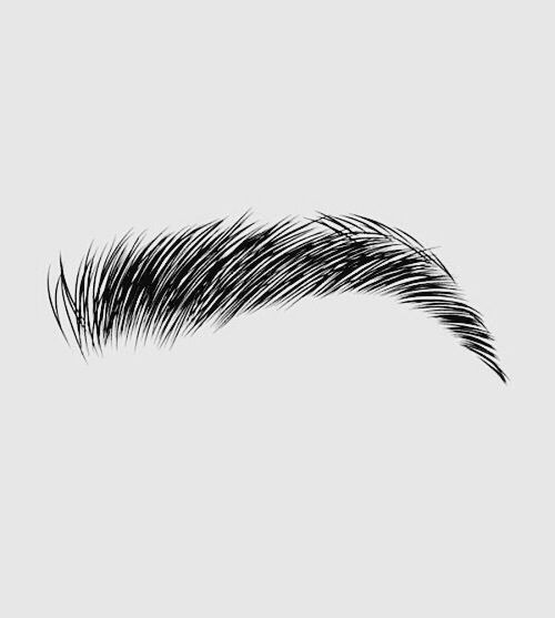 Draw art and eyebrows image