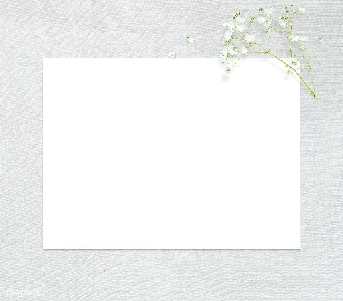 Download Premium Psd Of Blank Plain White Paper Template 1201929 Paper Background Texture Paper Template Flower Background Wallpaper