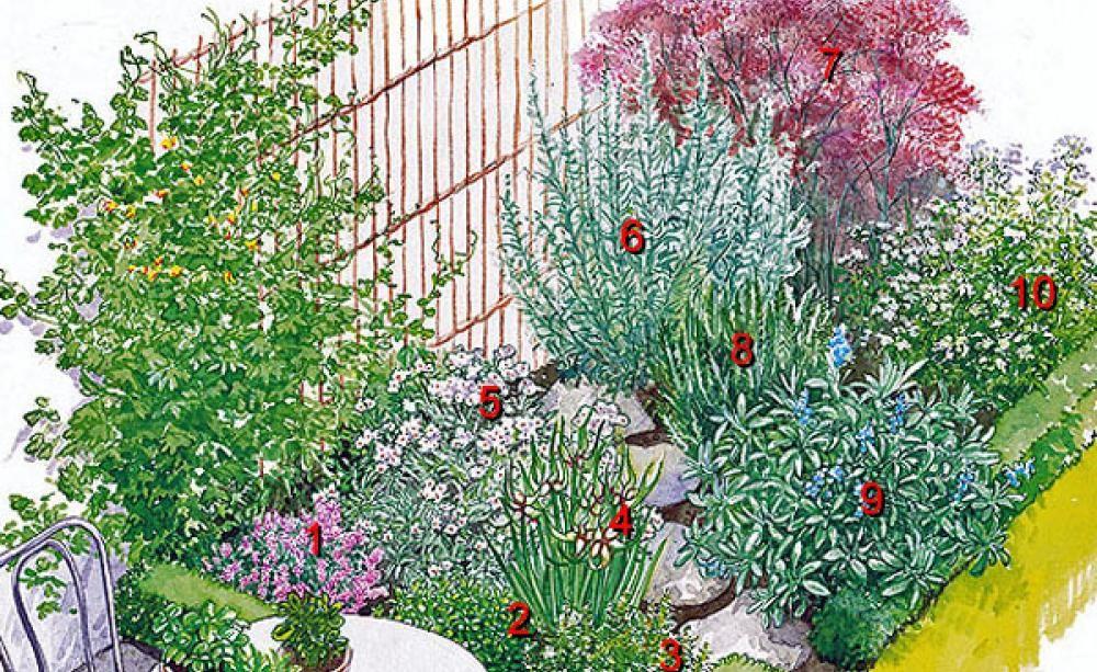 Zwei Kräuterbeete zum Nachpflanzen Kräuterbeet, Gartenecke und