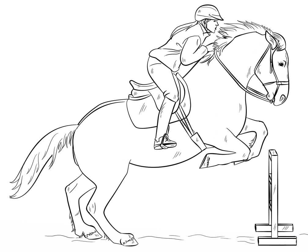 Jumping Horse With Rider Coloring Page Paard Tekeningen Dieren Tekenen Paardenschets