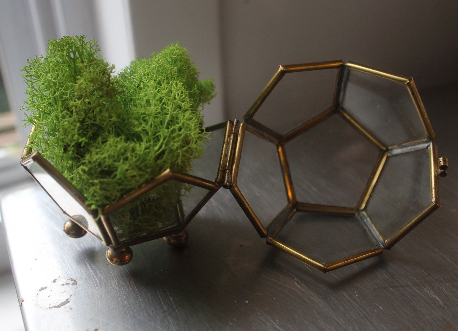 Little vintage polyhedron multisided brass and glass terrarium box