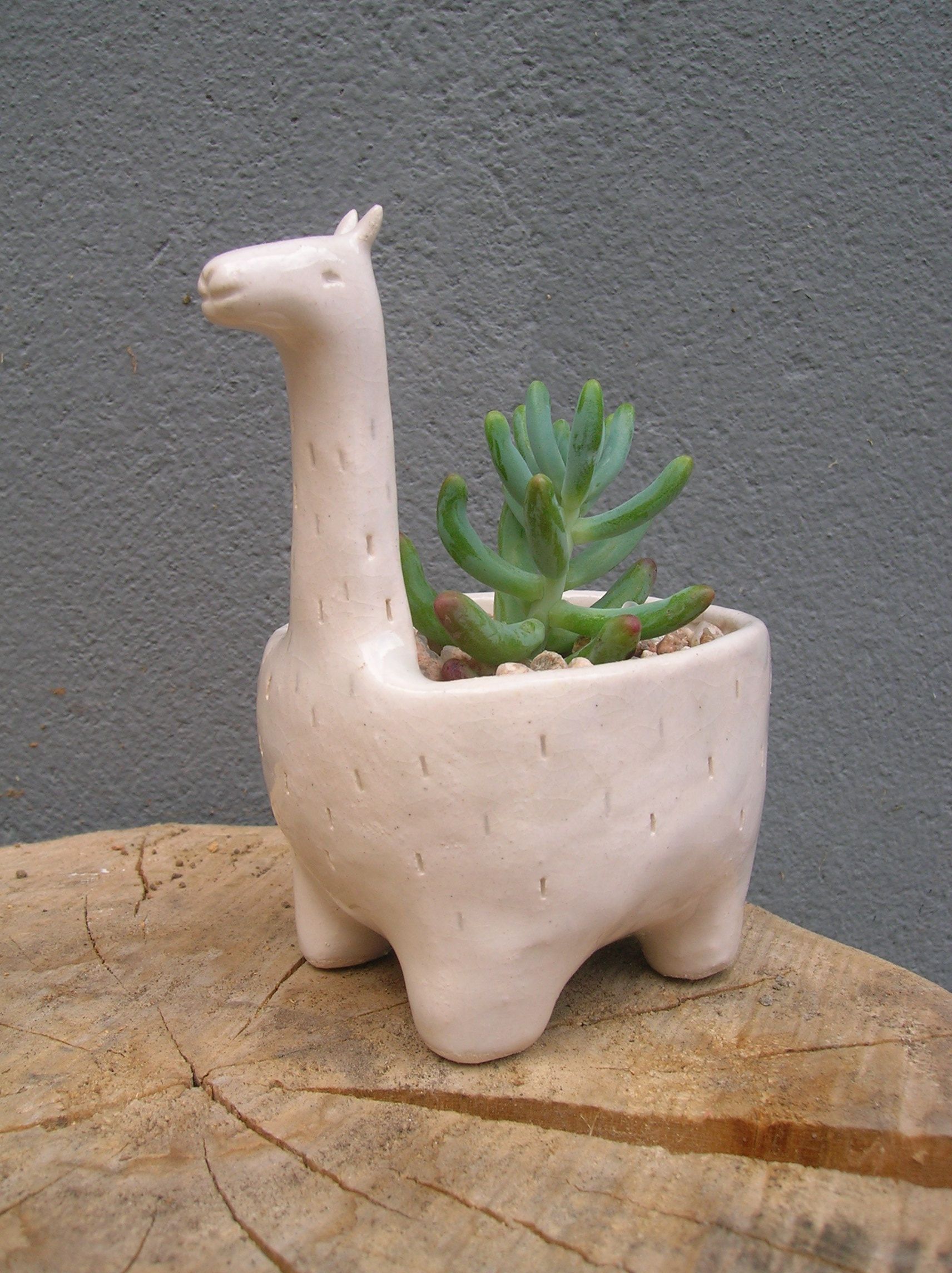 Maceta de cer mica llama verde cactus for Figuras ceramica