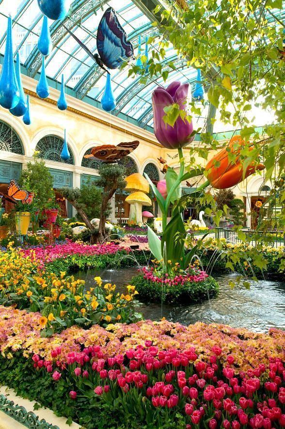 2c691483dc9eed9f979135403c660afb - Bellagio Conservatory & Botanical Gardens Las Vegas