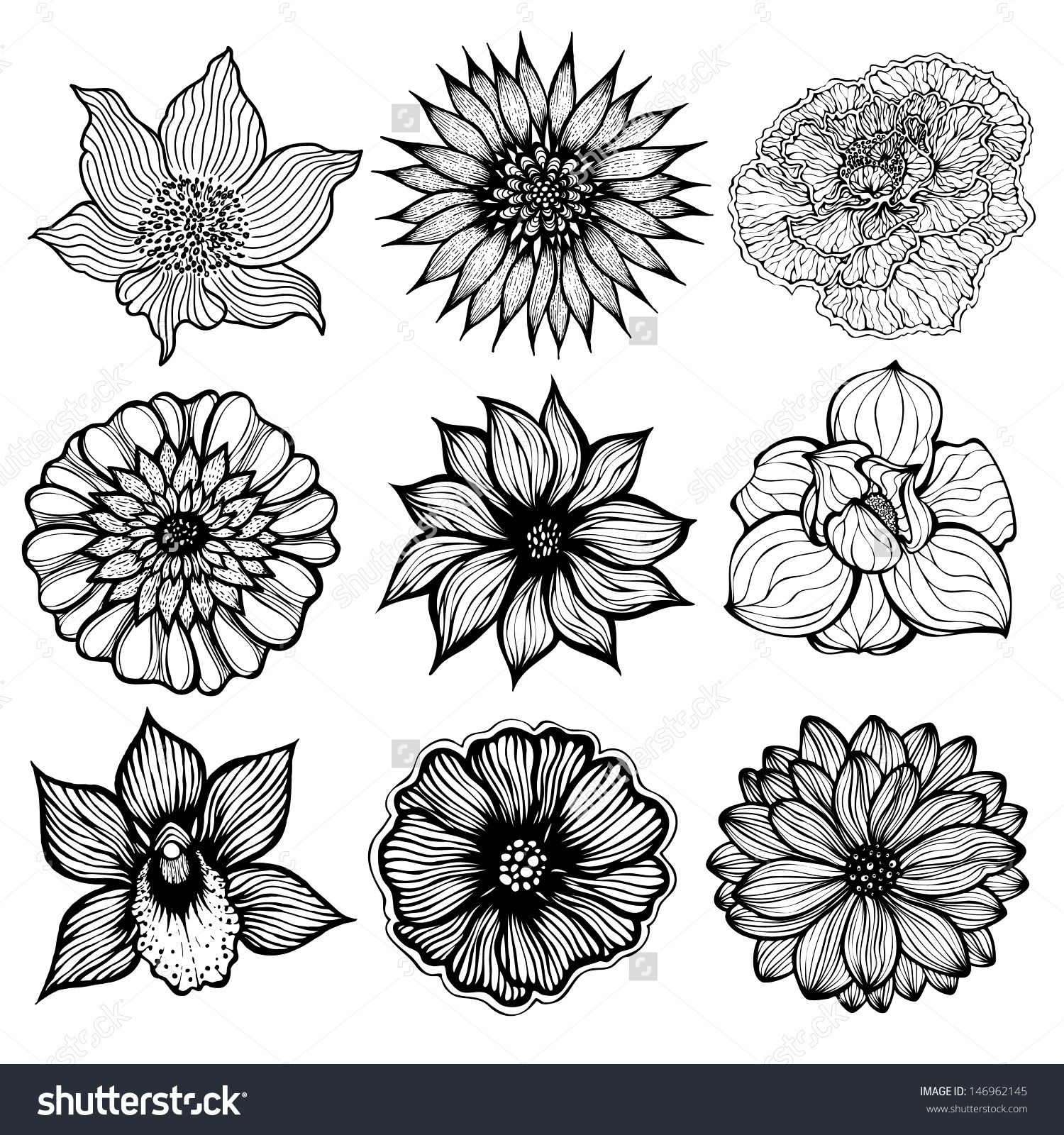 Set of 9 different hand drawn flowers, black and white