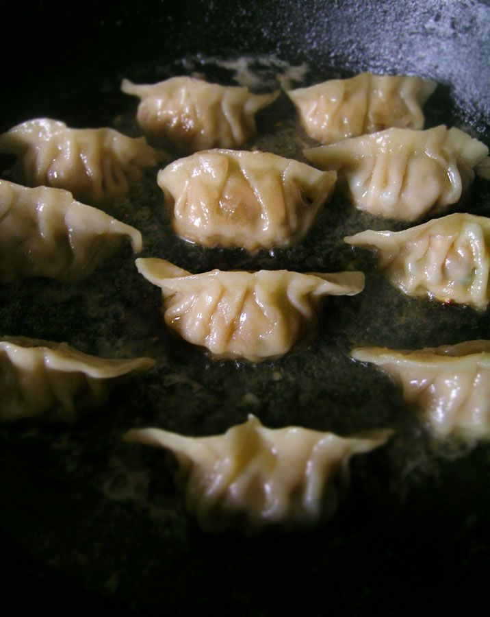 Pan Fried Gyoza (dumplings)