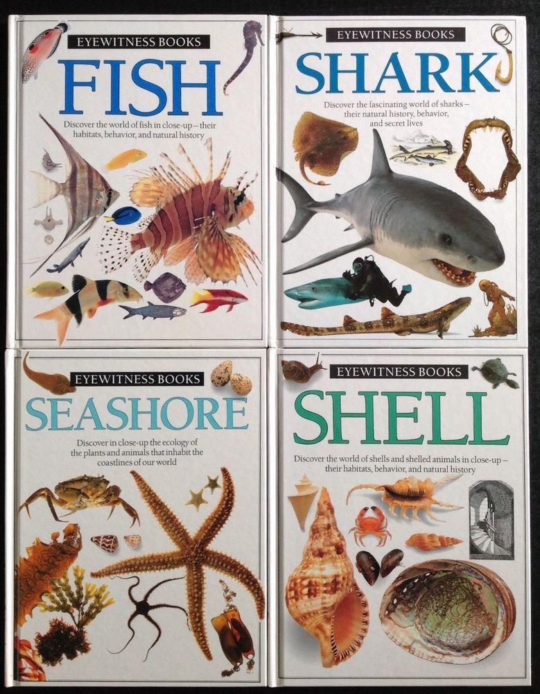 Lot Of 4 Hc Dk Eyewitness Books Shark Seashells Shell Fish Seashore Beach Ocean Fish Shark Sea Shells