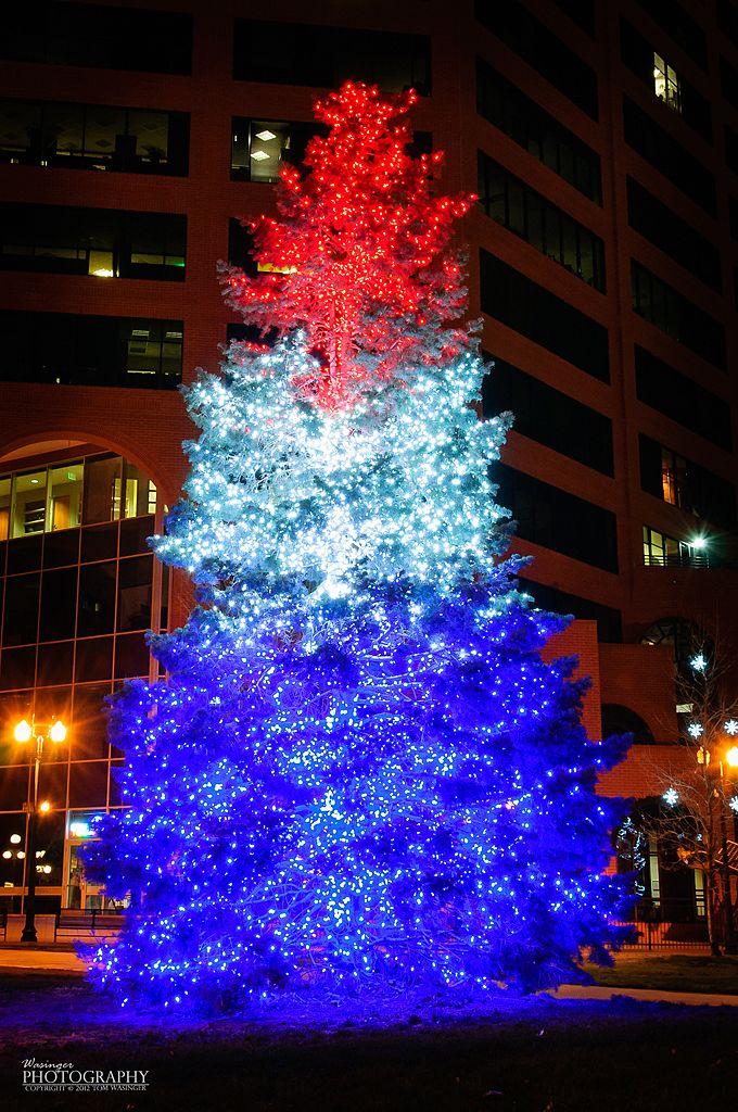 Red white and blue Christmas tree, Colorado Springs A Patriotic