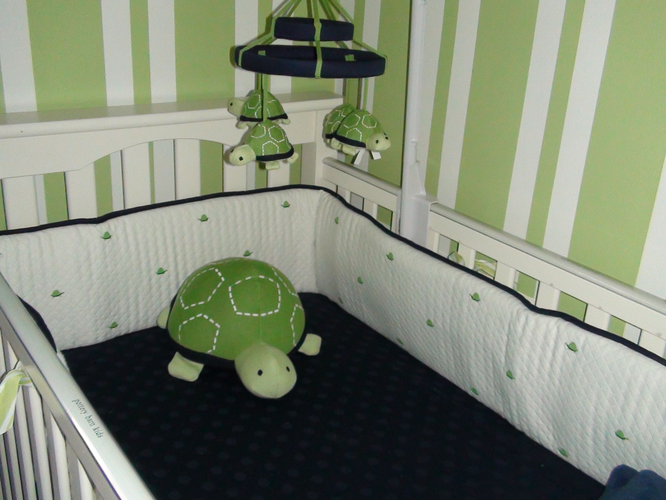 Blue And Green Nursery With Preppy Turtle Bedding From Gap Rug Furntiure Roman