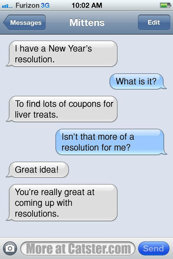 Texts from Mittens: The New Year\'s Edition | Catster Click image for ...