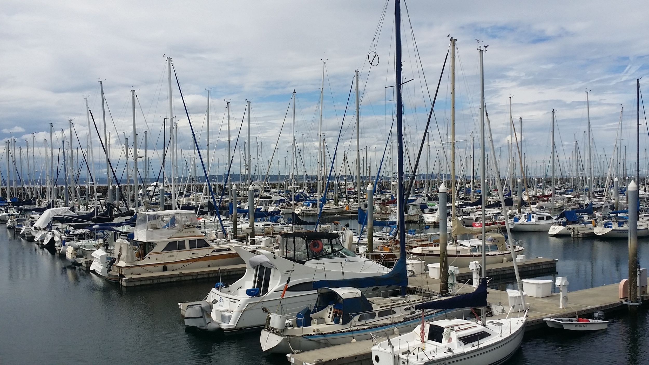 A Day at Shilshole Marina with Lassie Buttermilk