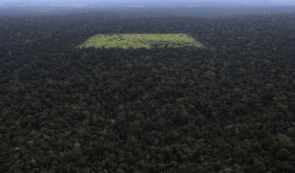 An Aerial View Shows A Tract Of Amazon Rainforest Which Has Been