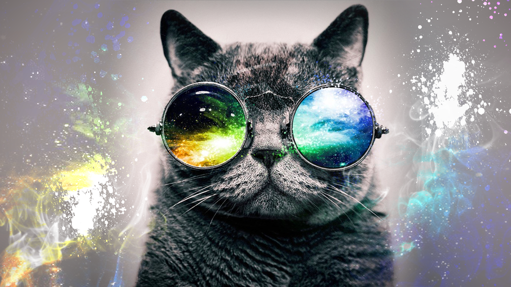 Cat With Galaxy Glasses Wallpaper
